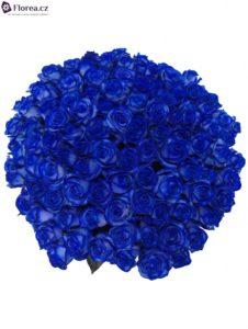 100 modrých růží