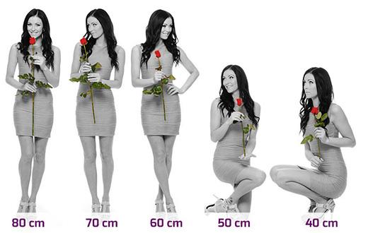 Délka růží v kytici